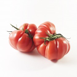 TOMATES ROSES BIO (APPROX....
